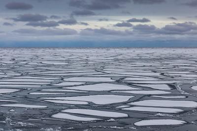 """""""Floating Ice, Paradise Beach"""""""