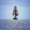A Sail To The Edge