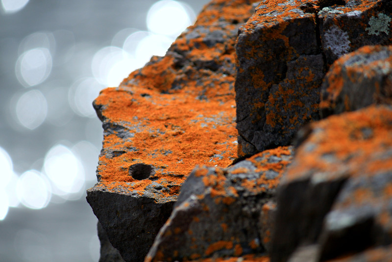 Radiance And Rust
