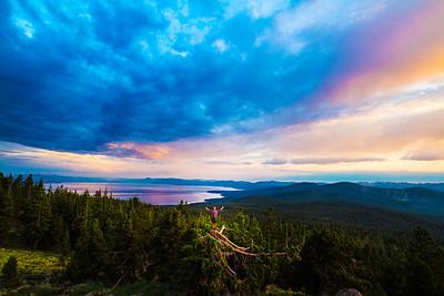 Tahoe Joy