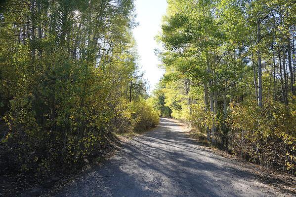 Trails Carpenter Valley