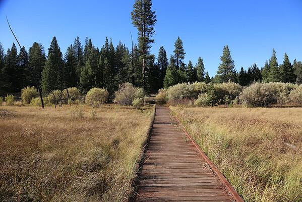 Trails Donner Camp