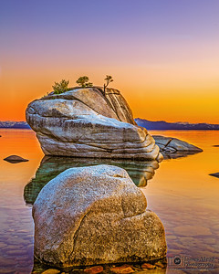 """Liquid Gold,"" Bonsai Rock, Lake Tahoe, Nevada"
