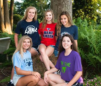Lake Volleyball T-shirt pics