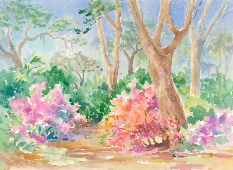 Azaleas on the Path