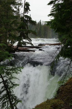 Murtle Lake & File Creek 2014