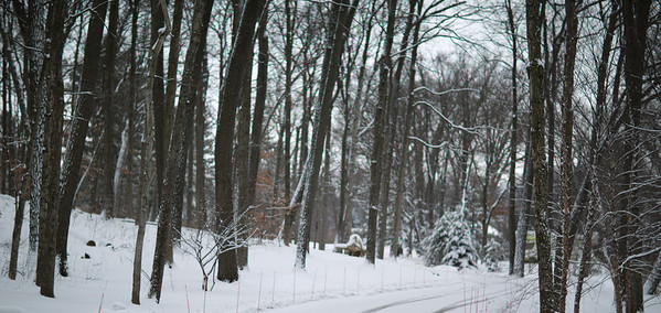 February 2013 Winter Scenes