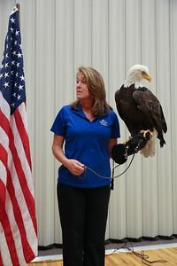 Logan's Eagle-19