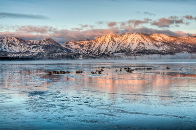 lake-geese-mountain-glow-2