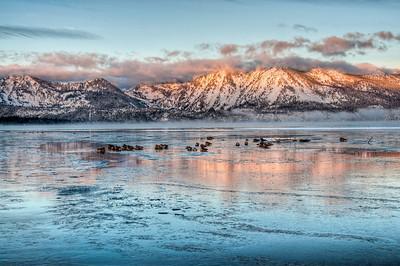 lake-geese-mountain-glow-2