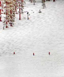 downhill-skiers-4