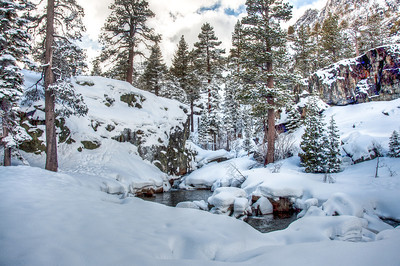 snowy-forest-stream-3