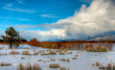snowy-winter-field-2