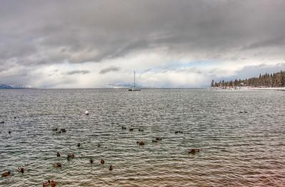 boat-birds-lake