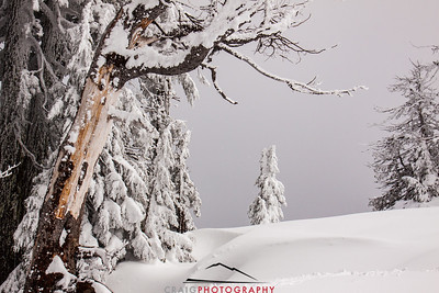 Crater Lake Oregon snow 1