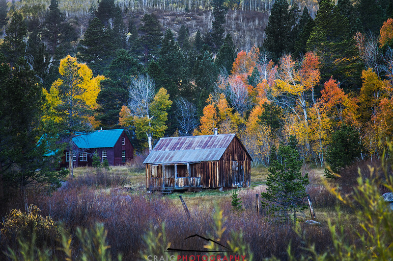 Hope Valley, CA, just South of Lake Tahoe often has the finest fall colors of the season.
