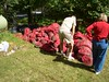 """Bags of sand & gravel dredged from lake during """"milfoil"""" removal - Waccabuc lake"""