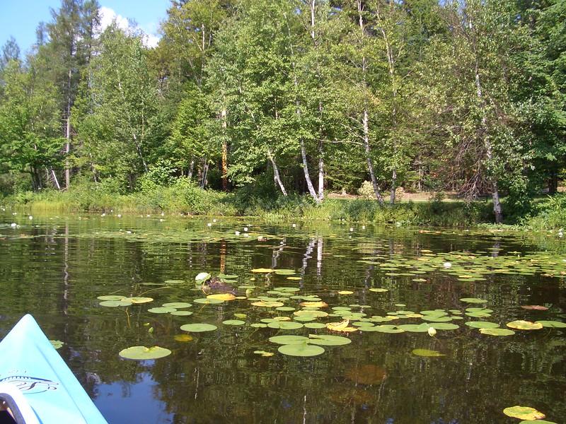 Mountainview Lake, Bellmont, NY