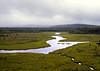 River floodplain, Maine