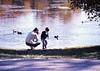 Feeding the Ducks - Durham, NH