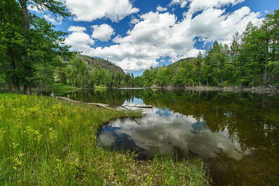 Twin Lakes Spring Reflections -June 2020 -2