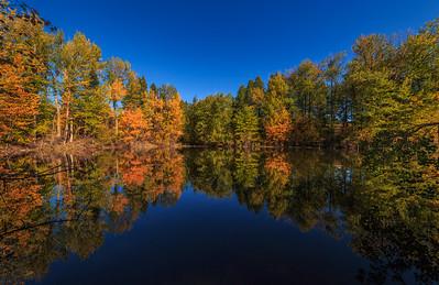 Twin Lakes Pond Eastward