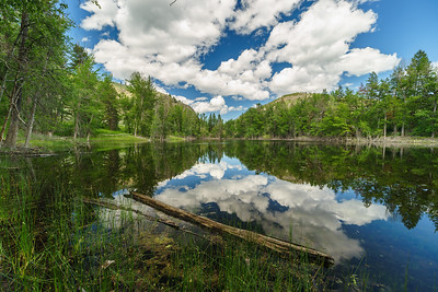 Twin Lakes Spring Reflections -June 2020