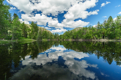 Twin Lakes Spring Reflections -June 2020 -3