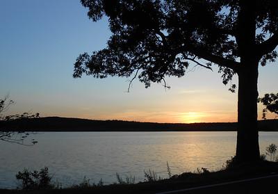 Springtime Sunset Silhouette