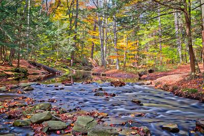 Kitchen Creek Flow