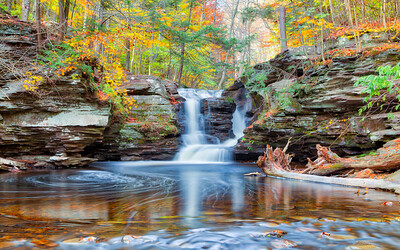 Murray Reynolds Falls - Ricketts Glen