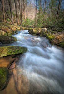 Cane Creek (1)