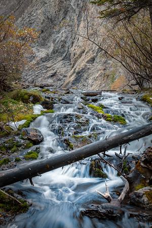 Stream at Grassi Lakes