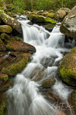 Roaring Fork Stream