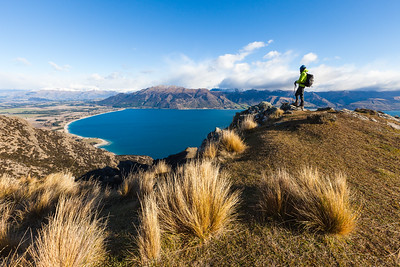 Tramper enjoying view of Lake Hawea, Lake Hawea Conservation Park, Otago