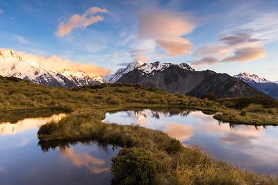 Snow tussock at McNultys Tarns with Aoraki Mount Cook beyond. Mount Sebastopol