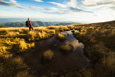 Tramper overlooking the Marchant Ridge and Wairarapa from Mt Alpha. Southern Crossing, Tararua Forest Park