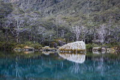 Blue Lake, West Branch Sabine Valley, Nelson Lakes National Park
