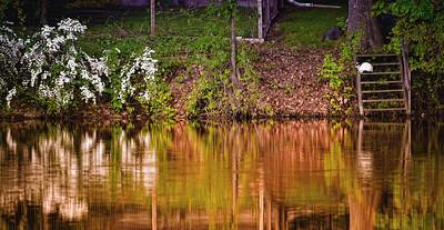 Autumn on the Grand River - Eaton Rapids, MI