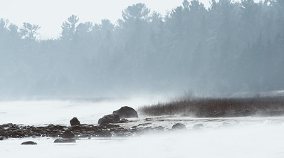 Lake Michigan Shoreline in the Fog.  Carnegie Woods, Naubinway, MI  -  March 2012
