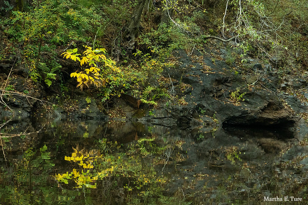 Reflection, hidden pool