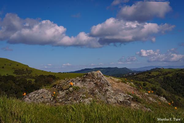 Loma Alta Trail