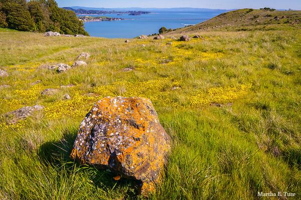 Ring Mountain and San Francisco Bay