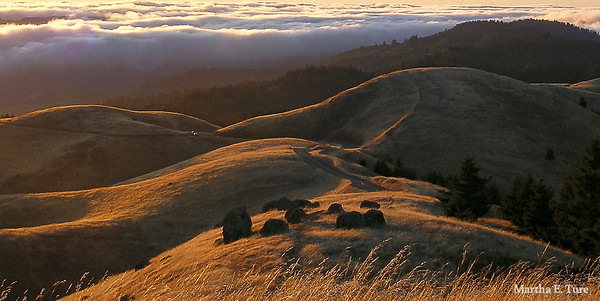 Sunset, Mt. Tamalpais