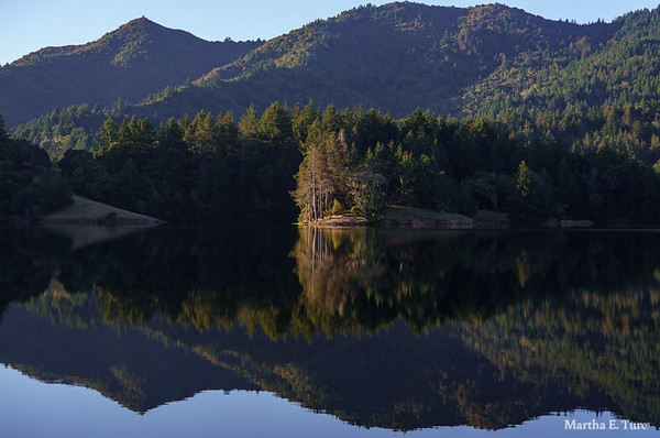 Pine Point Reflected in Lake Bon Tempe