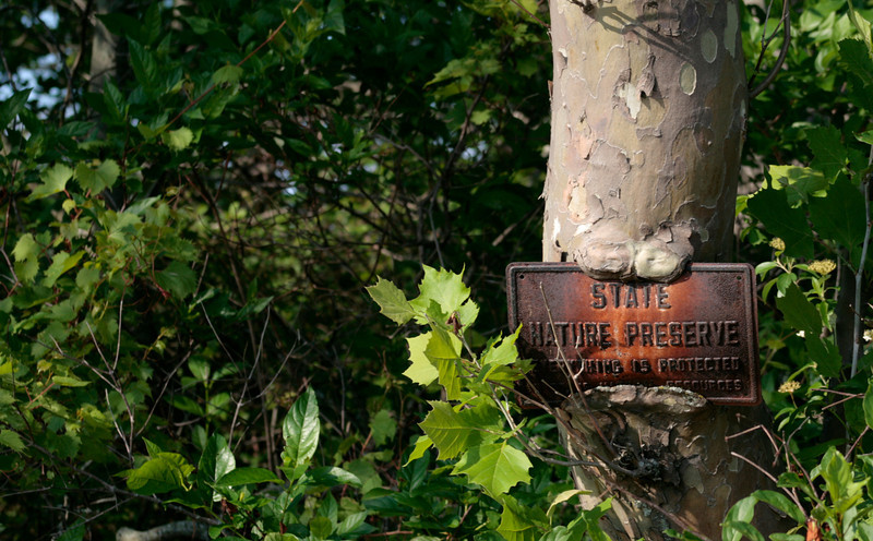Crooked Lake Nature Preserve (Island)