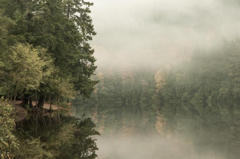 Alicia Lake