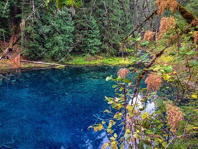 Blue Pool (Tamolitch)
