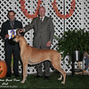 Best of Breed 10-05-12