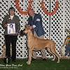 Best of Breed 10-6-12